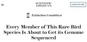 Scientific American Kakapo
