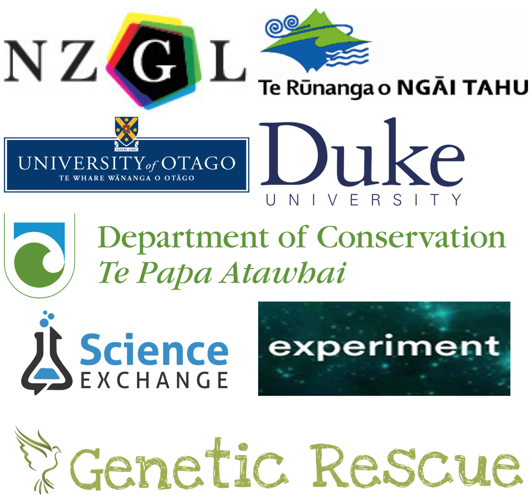 Kakapo 125 collaborators