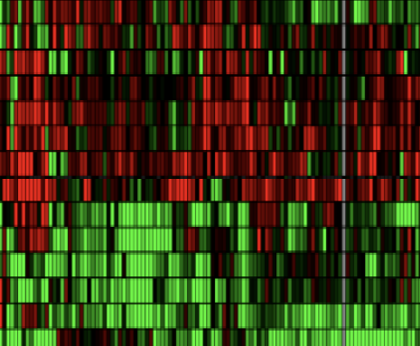 DigiWest™ Multiplex Protein Profiling
