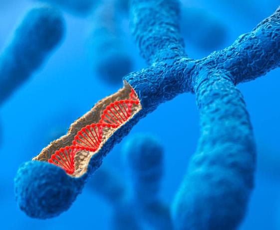 FANA Antisense Oligonucleotide (FANA – ASO) Technology